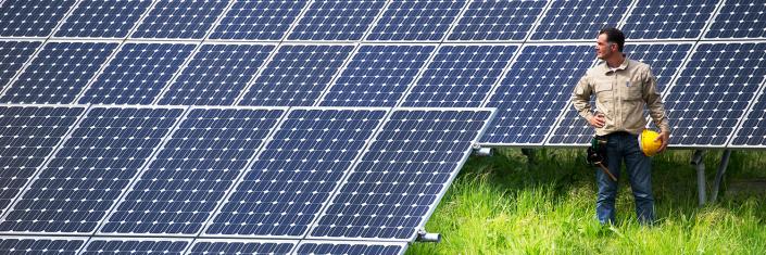 Solarpark Menterwolde, 215duizend zonnepanelen, goed voor 18.000 huishoudens.